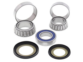 Steering Bearing Kit. Fits Victory 2009-2017 & Indian 2014up.