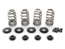 Valve Spring Kit; Big Twin'84-04, Sportster & Buell'86-03. .600