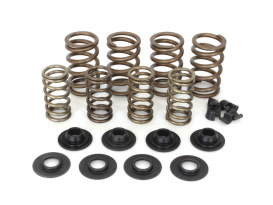 Valve Spring Kit. Fits Big Twin 1984-2004, Sportster & Buell 1986-2003. Steel Double Springs with .650in. Lift.