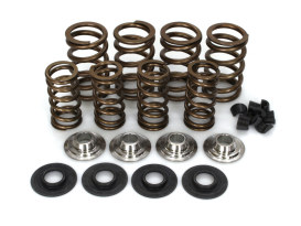 Valve Spring Kit. Fits Big Twin 1984-2004, Sportster & Buell 1986-2003. Steel Double Springs with .675in. Lift. Titanium Retainers!
