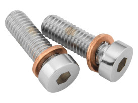 Damper Tube Screw & Washer Set.