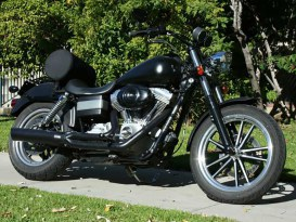 Fat Cat 2-into-1 Exhaust with Back Cut Straight Muffler - Black. Fits Dyna 1995-2005.