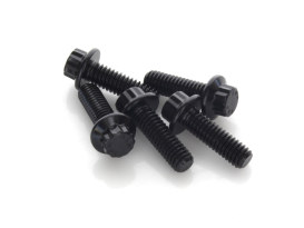 Front Disc Bolts - Black 12 Point ARP. 5/16in.-18 x 7/8in.. Fits Most HD models 1984up.