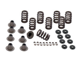 0.605in. Valve Spring Kit. Fits Milwaukee-Eight 2017up.